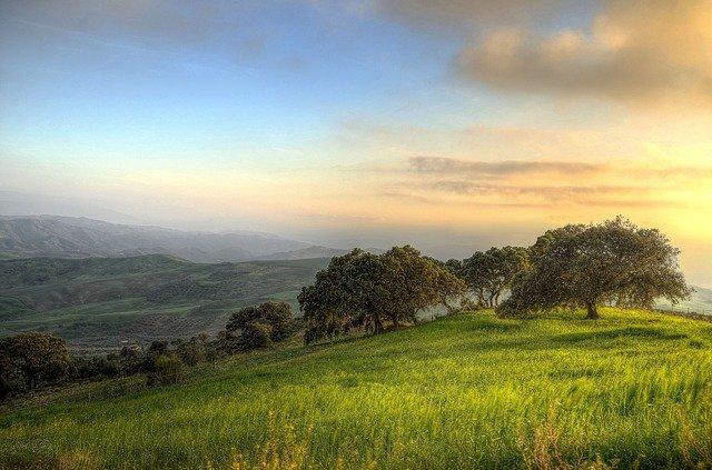paysage en andalousie